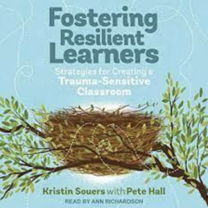 Maximizing Resilient Learners-Book Study